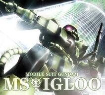 MS-Igloo