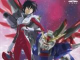 Mobile Suit Gundam SEED Destiny: Special Edition