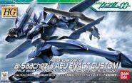 Hg00-ali-enact-custom
