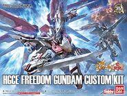 HGCE Freedom Gundam Custom Kit