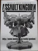 AssaultKingdom nz-999 p01 front