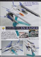 XN Raiser article IV