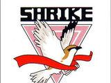Shrike Team