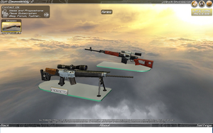 Gun Disassembly Rifle CTG