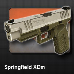 Springfield XDm