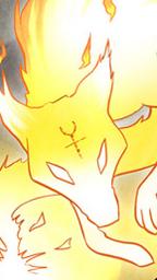 Renard Spirit