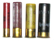 Shotgun shell comparison