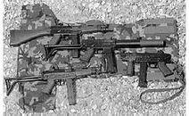 FAMAE SAF variants