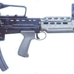 Law Enforcement International's .22 SA80.