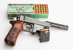 Bergmann M1910-21