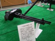 Type100mg3