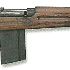 Argentinian SAFN with a 20-round .30-06 <a href=
