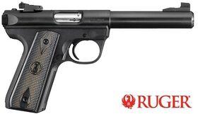 Ruger 2245 Target