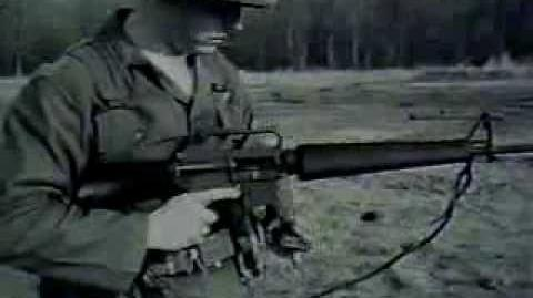 The M16 Rifle (1966)