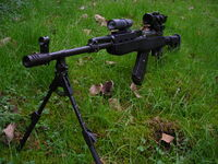 Sks with bipod 003