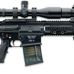 HK417 with 12-inch barrel, <a href=