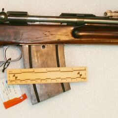 Cei-Rigotti with extended magazine.