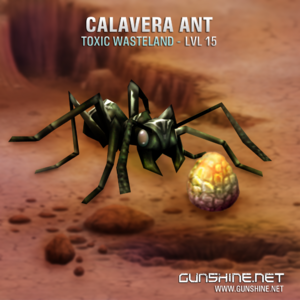 Calavera ant