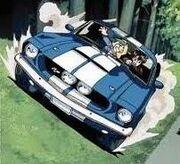 Rally's Cobra