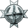 Pilot Badge12