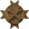 Engineer Badge9