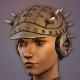 Armadillo HelmetF