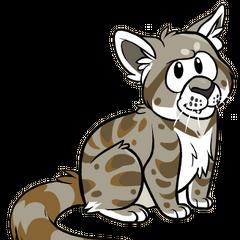 Gato Andino versión Club Penguin, mi décima sexta imagen de perfil