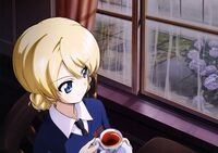 Darjeeling in the rain