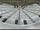 Amphitheatre2.png