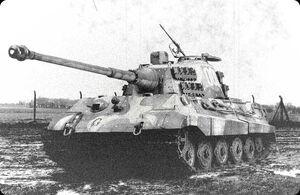 Tigerii008cw 19a