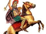 Ослы, лошади и мулы (Donkeys, horses and mules)