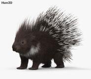 Porcupine in Warriors Orochi 4