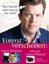 Comeback-guttenberg