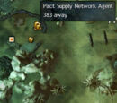 Pact Supply Network Agent
