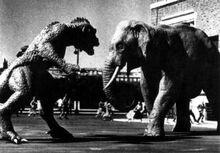 Ymir vs elephant