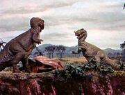 Ceratosaurus in the fight