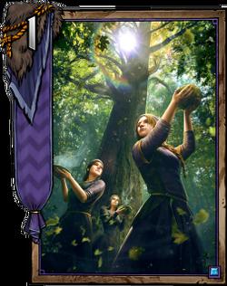 Priestess of Freya1