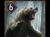 Wściekły niedźwiedź