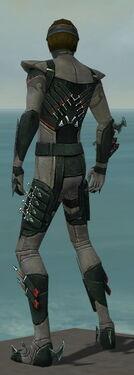 Assassin Seitung Armor M gray back