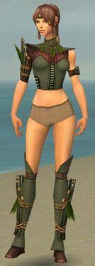 Ranger Druid Armor F gray chest feet front