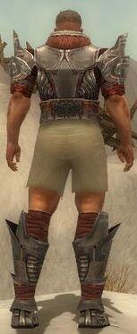 Warrior Asuran Armor M gray chest feet back