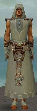 Dervish Istani Armor M gray front