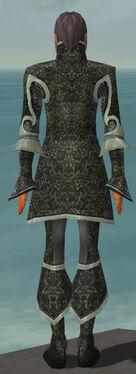 Elementalist Elite Canthan Armor M gray back