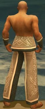 Monk Tyrian Armor M gray arms legs back