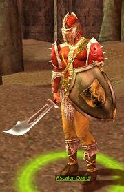 Ascalon Guard
