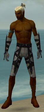 Assassin Obsidian Armor M gray arms legs front
