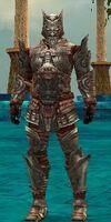 Warrior Asuran Armor M gray front