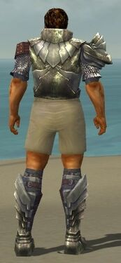 Warrior Templar Armor M gray chest feet back