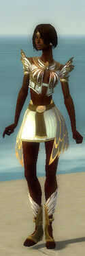 Paragon Deldrimor Armor F dyed front