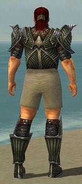 Warrior Wyvern Armor M gray chest feet back